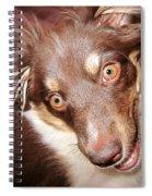 Talking Dog Spiral Notebook