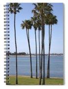 Tall Palms Spiral Notebook