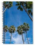 Tall Palms Meet The Sky Spiral Notebook