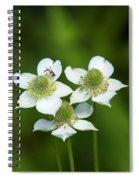 Tall Thimbleweed Dsmf0228 Spiral Notebook