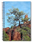 Tall Trees And Rocky Spires Spiral Notebook
