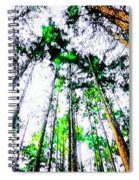 Tall Trees To The Sky Spiral Notebook