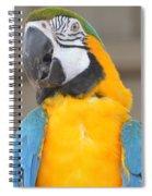 Tanganyika 0087 Spiral Notebook
