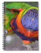 Tanganyika 0102 Spiral Notebook