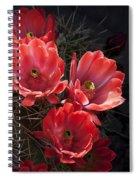 Tangerine Cactus Flower Spiral Notebook
