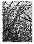 Tangled Grass Spiral Notebook