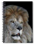 Tango #2 V2 Spiral Notebook