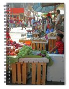 Tapachula 9 Spiral Notebook