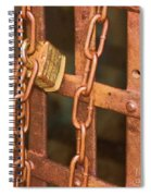 Tarnished Image Spiral Notebook