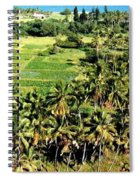 Taro Fields Spiral Notebook