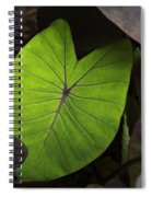 Taro Hoomaluhia 2 Spiral Notebook