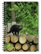 Tasmanian Devil Spiral Notebook