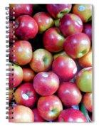 Tasty Fresh Apples 1 Spiral Notebook