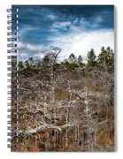 Tate's Hell State Forest Spiral Notebook