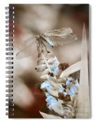 Tattered Wings B1 Spiral Notebook