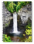 Taughannock Falls View From The Top Spiral Notebook