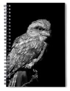 Tawny Frogmouth In Black And White Spiral Notebook