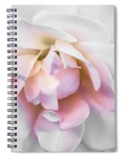 Tea Rose Spiral Notebook