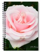 Tea Rose In Pink Spiral Notebook