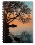 Teal And Orange Morning Tranquility With Rocks And Willows Spiral Notebook