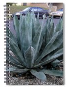 Teal-green Tequila Plant. Exotic Spiral Notebook