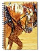Teamed Spiral Notebook