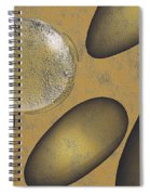 Tears Of Gold Spiral Notebook