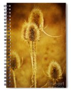 Teasel Group Spiral Notebook