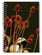 Teazels In A Secret Garden  Spiral Notebook