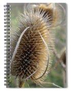 Teazle Spiral Notebook
