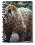 Teddy Bear Alive Spiral Notebook