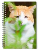 Teddy In The Garden Spiral Notebook