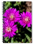 Teeny Tiny Floral Wonders Spiral Notebook