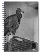 Tell No Tales.. Spiral Notebook