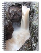 Temperance River State Park Four Spiral Notebook