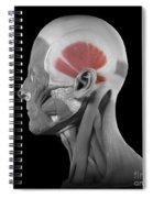 Temporalis Spiral Notebook