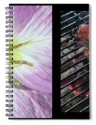 Temptation 1 Spiral Notebook