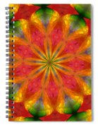 Ten Minute Art 090610-a Spiral Notebook