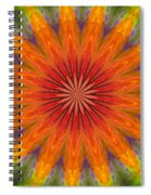 ten Minute Art 090610 Spiral Notebook