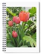 Tender Tulips Spiral Notebook