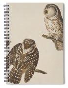 Tengmalm's Owl Spiral Notebook