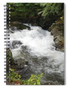 Tennessee River Spiral Notebook