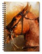 Tennessee Walker In August Spiral Notebook