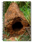 Termite Mound In Brazil Spiral Notebook
