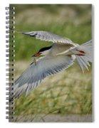 Tern Spiral Notebook