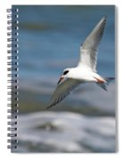Tern Over The Waves Spiral Notebook