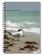 Tern's View Gp Spiral Notebook
