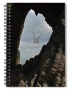 Tern Through The Gap Spiral Notebook
