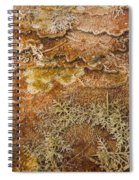 Terracettes 1 Spiral Notebook