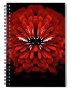 Test Red Abstract Flower 3 Spiral Notebook